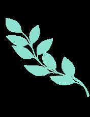 img-plant-4
