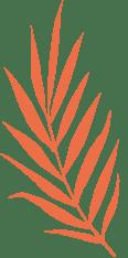Planta naranja