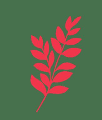 Planta púrpura